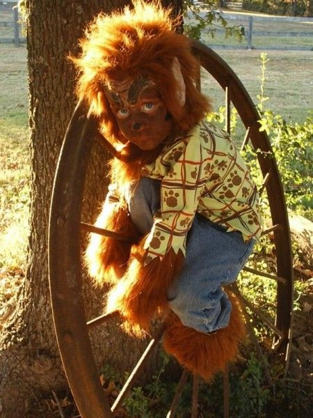 diy boys werewolf costume