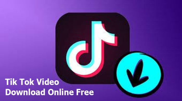 Tik Tok Video Download Online Free How To Download Tik Tok Videos For Free Trendebook Download Video Live Photo App Video Downloader App