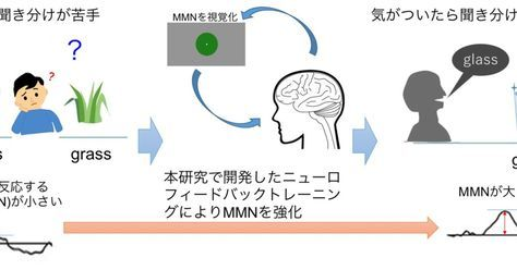 映像に意識を集中すると英語リスニング能力アップ――NICTがニューロフィードバック応用の技術を発表