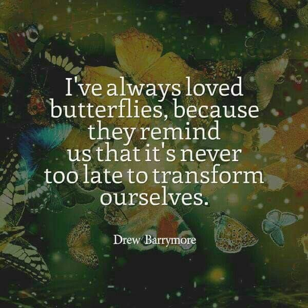 Who doesn't love Drew Barrymore - she symbolizes transformational change! Read about Ruby's flight of passion and enjoy love amongst the butterflies here getBook.at/FlightofPassion