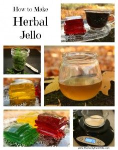 Herbal jello for treating youngsters. Brilliant idea. Of course, I can't advocate using actual jello, but it's simple enough to make with juice and gelatin.