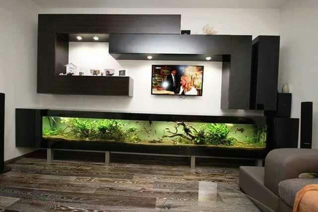 Acuariosacuarios Wall Aquarium Living Room Designs