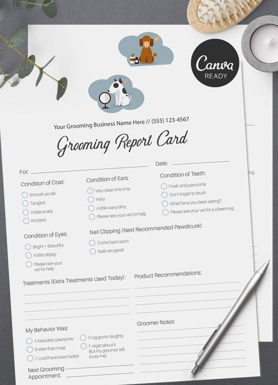 Stylish Pet Grooming Report Card Pack Pet Groomers Pet Business Printable Pre Made Design Pet Report Cards Pet Grooming Business Report Card Template Pet Grooming