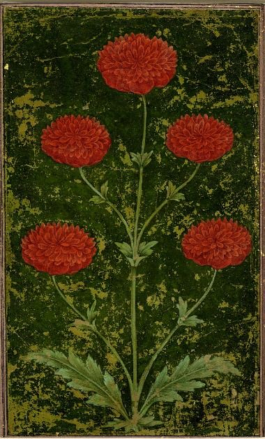 Unknown (India), Untitled Flower Painting, 1650-1750