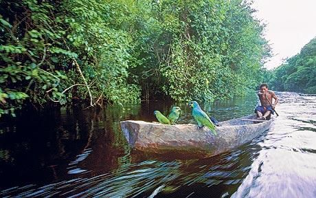 Guyana: A journey into the Jurassic