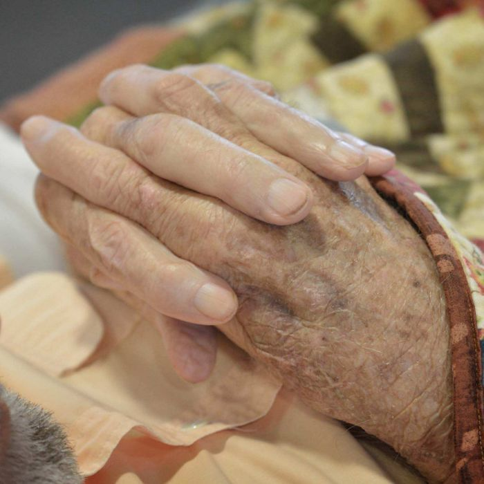 A vaccine to prevent and even reverse the early stages of Alzheimer's and dementia could be tested on humans within the next two to three years.
