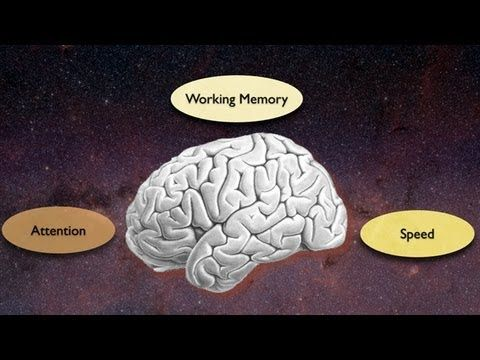 Exploring the Crossroads of Attention and Memory in the Aging Brain: Views from the Inside - YouTube
