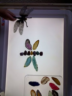 Bringing Nature to the Light Table