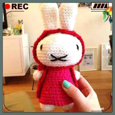 iCrochetstuff: Nijntje knuffel met jasje en jurk haken met patroon (Miffy toy crochet pattern).. Lief lief lief!