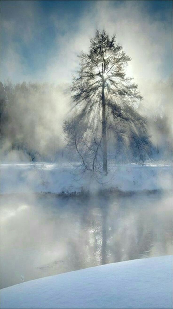 Early morning winter beauty mist.