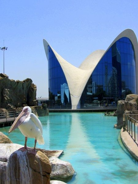 Going On Vacation In Valencia Spain Read On About The Top 10