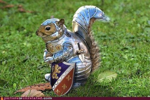 Squirrel LARPing