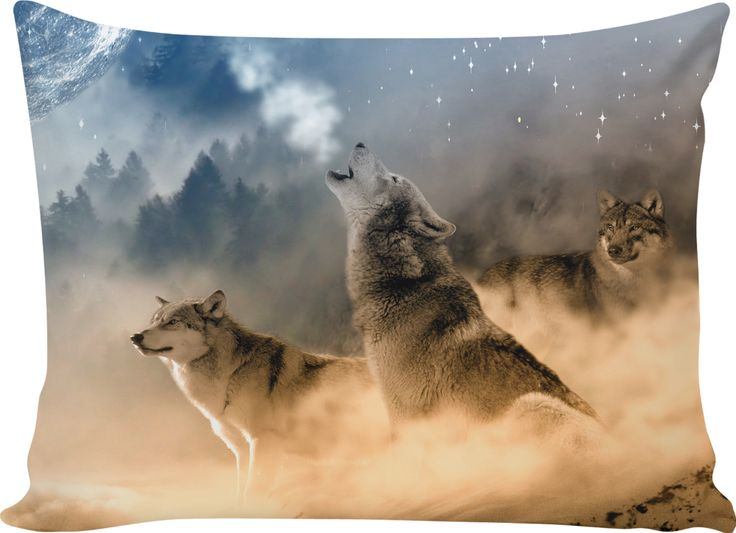 Three gray wolves - One howling at the moon