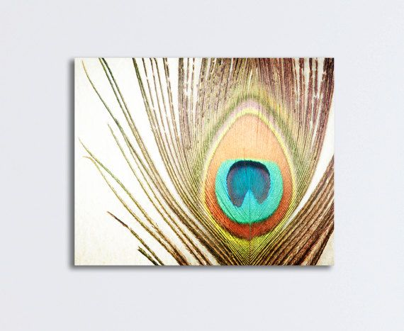 42 best images about art feathers on pinterest