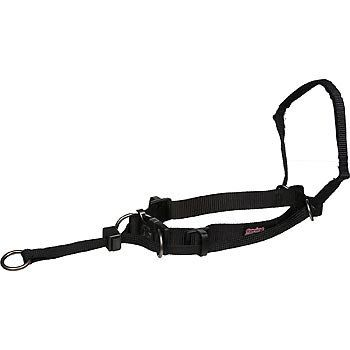 Yuppie Puppy Medium Black Nonpull Head Halter Want To