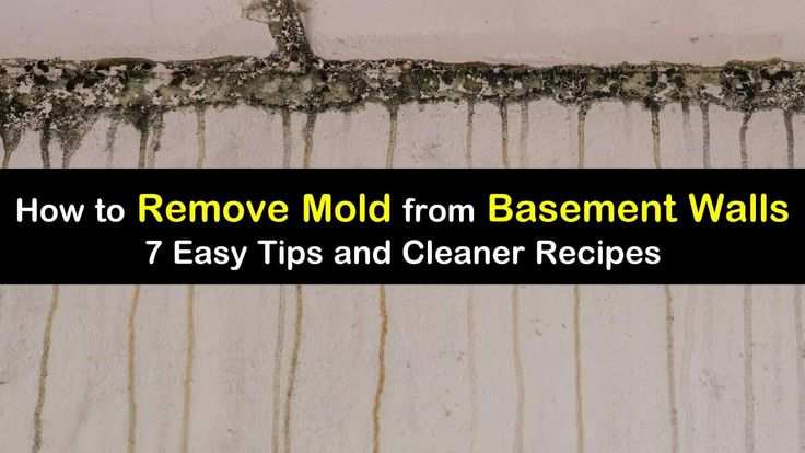 7 quick ways to remove mold from basement walls in 2020