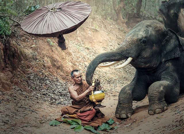Тот, кто вглядывается в кончик волоска, не заметит,  как велик мир. Тот, кто вслушивается в шорохи, не услышит, как грохочет гром. Тот, кто видит большое, не  увидит малого. Тот, кто ищет близкое, не заметит  далекого. Тот, кто слушает гром, не услышит тишины.  Тот, кто внимает близкому, не постигнет отдаленного.  Мудрый ни на что не смотрит и потому все видит. Он  ни к чему не прислушивается и потому все слышит.  Китайская мудрость