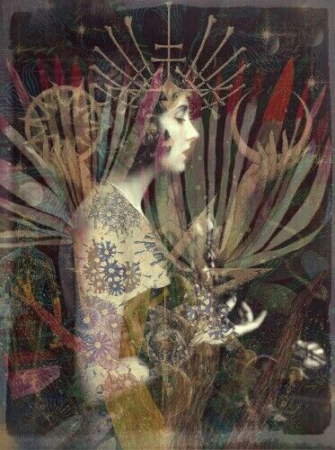 Rory Robinson 2015 #collage #vintage #botanical #art #mystical #occult