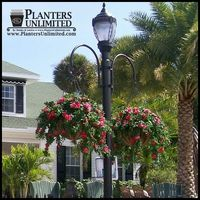 Planters Unlimited $195 double hanging basket support bracket (two-way hook style hanging basket bracket)