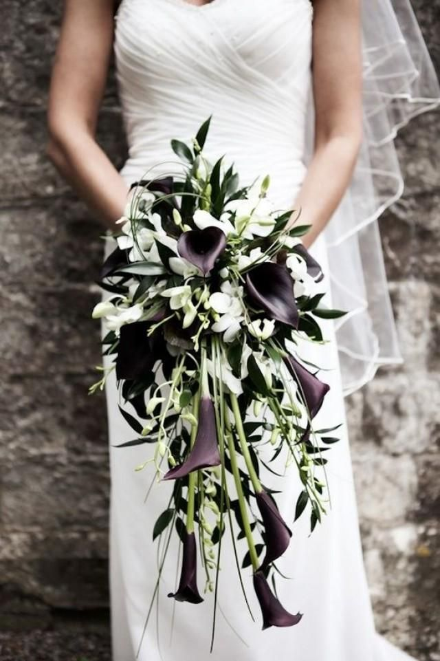 Black and white calla lily cascade bouquet with Larkspur, dark eggplant mini calla