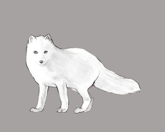 Modern Nursery Animal Artwork - Arctic Fox - Printable Gender Neutral wall decor by CubsandKids