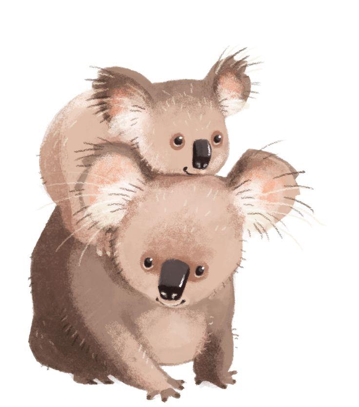 того картинка коала с лисой вызвало резонанс