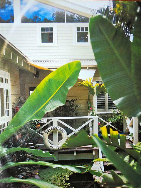 beach house sydney  belle magazine