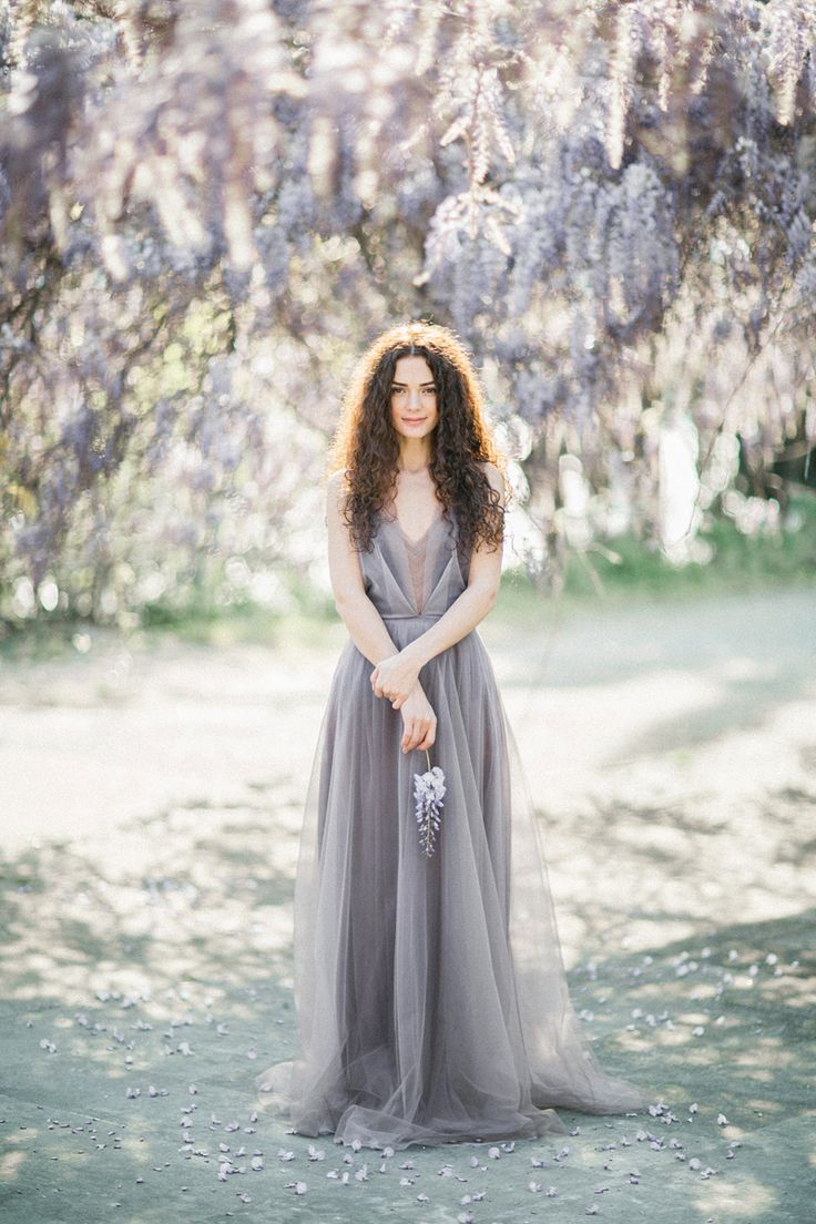 for the love of wisteria 10