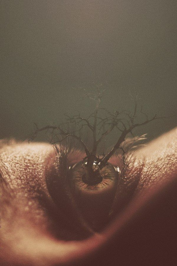 Eyes, photo manipulation by Nevan Doyle - ego-alterego.com