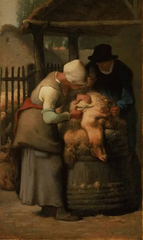 Shearing Sheep Shearing Sheep by Jean Francois Millet