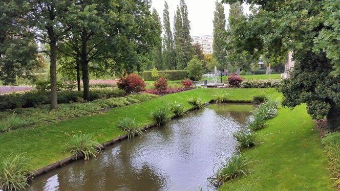 Rechthoekige vijver, Rotterdam