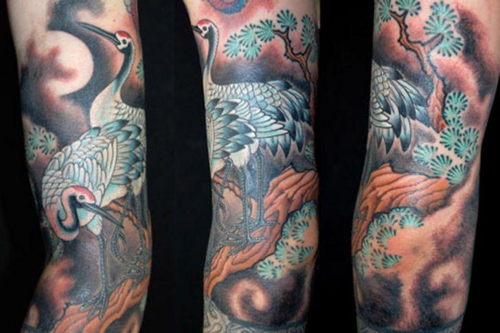 30 best bird tattoos images on pinterest design tattoos tattoo designs and tattoo ideas. Black Bedroom Furniture Sets. Home Design Ideas