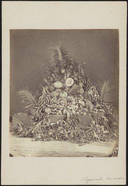 Tropische vruchten, Indonesië (1860-1900)