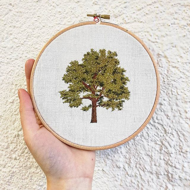 . . . . . . . . . . . . . . . #maple #erable #foret #forest #arbre #greenlife #tree #nature #making #hoopart #hoopembroidery #draw #dessin #handembroidery #embroidery #embroideryart #broderie #broderiemain #handmade #faitmain #brodeuse #stitching #embroidered #madeinfrance #delphil #tatoueusedetissu #modernembroidery #contemporaryembroidery #embroideryinstaguild #embroiderylove
