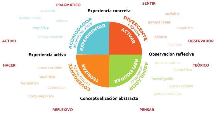 La teoría de los estilos de aprendizaje de Kolb | Actualidad en Psicología