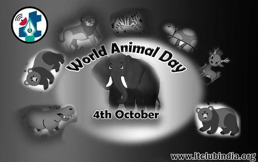 #world animal day http://itclubindia.org/