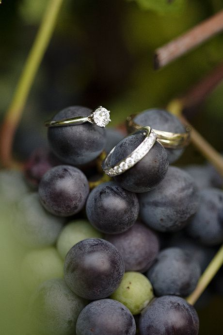 vineyard wedding ring shot. Love how they incorporated something from the natural setting to make the ring shot more artistic.