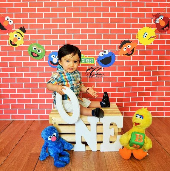 Sesame Street Banner 8 10 12 14 or 16 by BrandalynsPaperie on Etsy