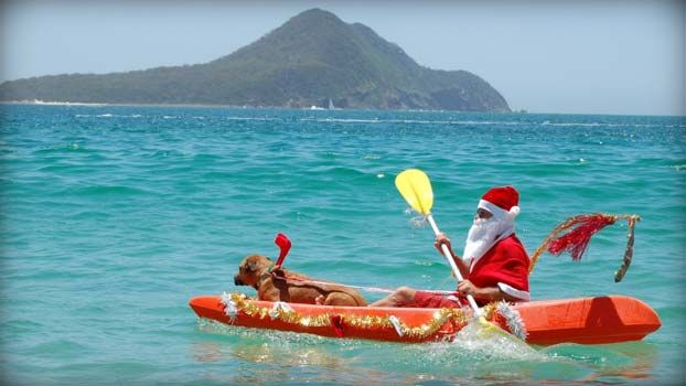 #aussie #Christmas #santa #canoe #dog #water #hot #summer