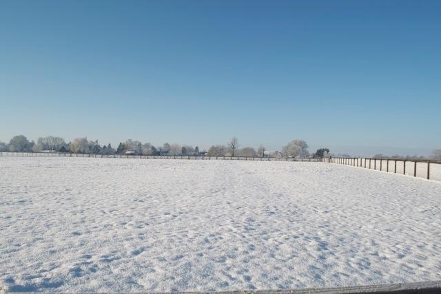 Snow covered paddocks.