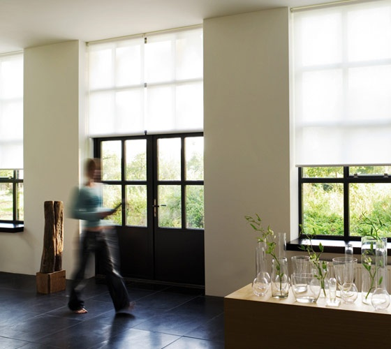 House Update - Roller Shades |  Black | White | Beige ...