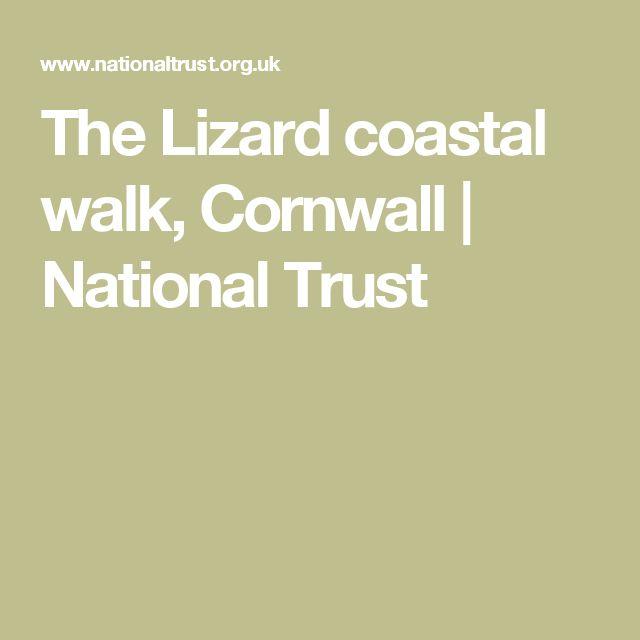 The Lizard coastal walk, Cornwall   National Trust