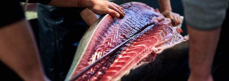 The Tsukiji Fish Market appears in literally every guide book about Tokyo and on most people's tour itineraries—plus it boasts free entrance