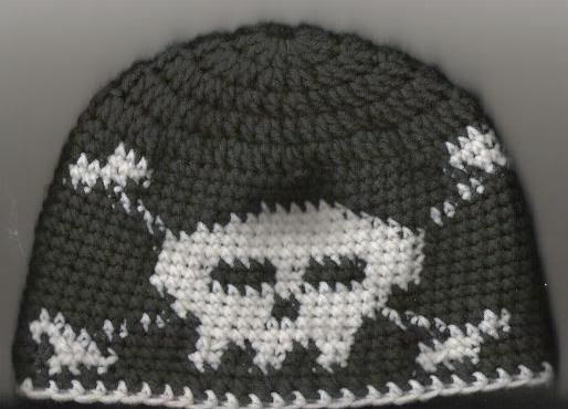 Skull And Crossbone Beanie She Posted A Color Chart But No Other