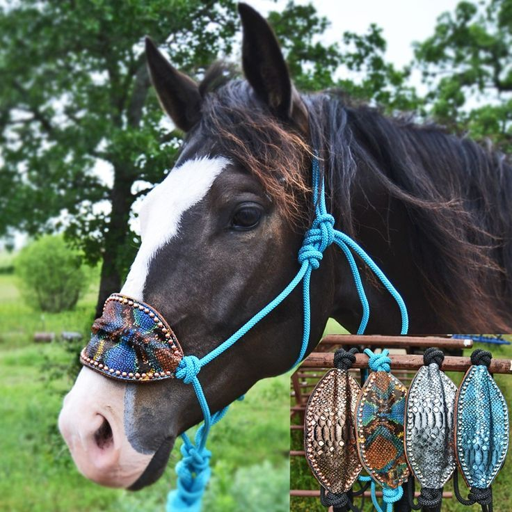 Teskey's Python Bronc Nose Halters with Leads