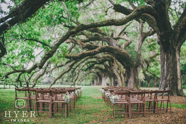 Event Planning by @pureluxebride | Florals by @BranchDesigns | The Cotton Dock | Boone Hall Plantation Wedding | Photo by Hyer Images | Ceremony under the oaks | Ceremony under big tree | Charleston SC Wedding Photographer | Boone Hall Plantation Wedding | Outdoor Wedding Ceremony