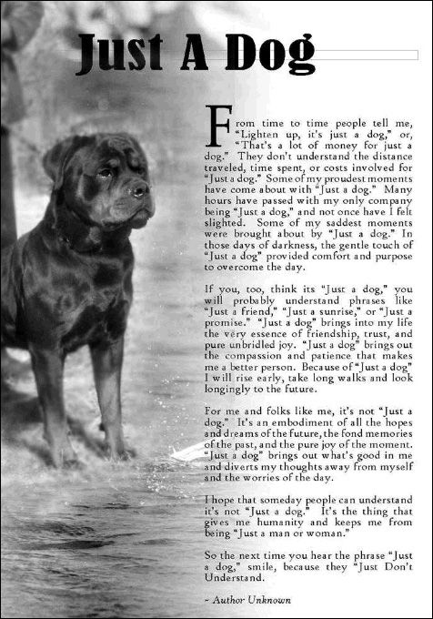 Image result for JUST A DOG POEM   Dogs   Dogs, Dog lovers ...