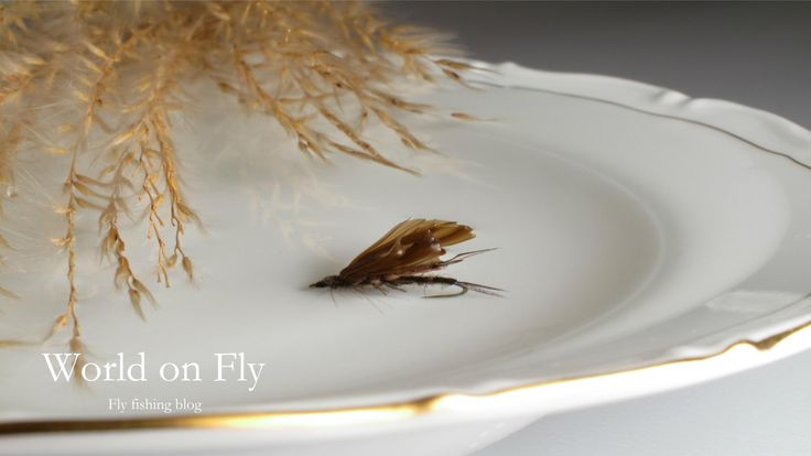World on Fly New blog about fly tying by fly fishing enthusiaists from Czech Republic. http://worldonfly.tumblr.com/ Česká verze: http://worldonfly-cz.tumblr.com/