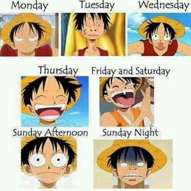 Luffy is literally me during the week. :)