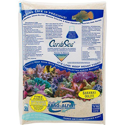 Caribsea Arag-Alive Bahamas Oolite Aquarium Sand, 10-Pound *** Learn more by visiting the image link.
